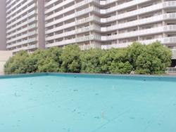 屋上防水施工(各種防水)